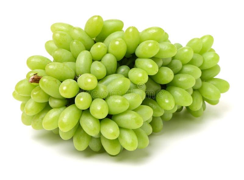 raisins de fond blancs images libres de droits
