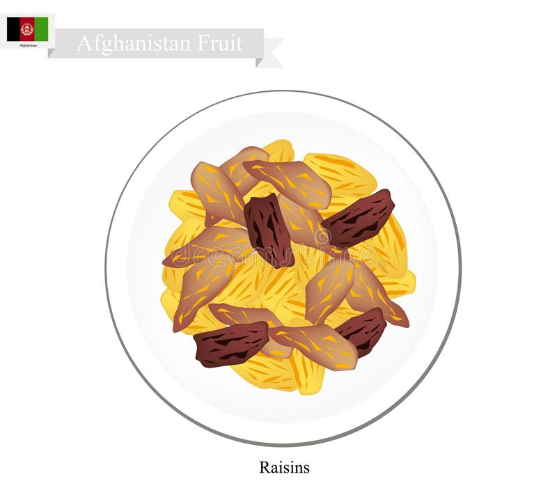 Raisins or Dried Grape, The Popular Snack in Afghanistan. Afghanistan Fruit, Illustration of Raisins or Dried Grape. The Most Popular Fruits of Afghanistan vector illustration