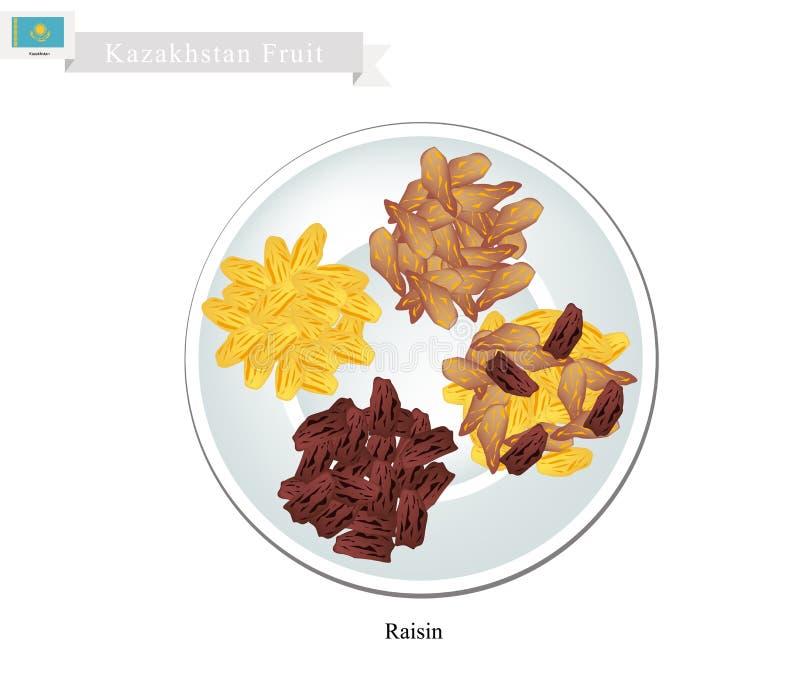 Raisins or Dried Grape, The Popular Snack in Kazakhstan. Kazakhstan Fruit, Illustration of Raisins or Dried Grape. The Most Popular Fruits of Kazakhstan stock illustration