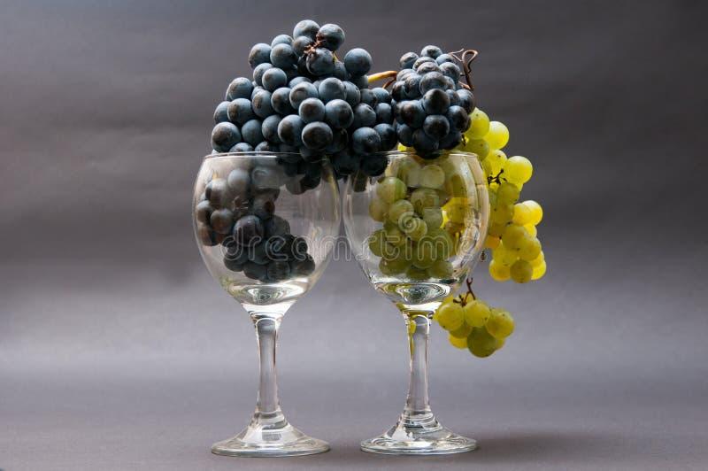 Raisins en verres photographie stock