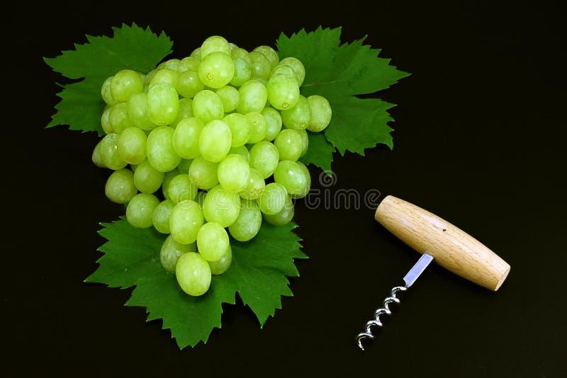 Raisins et tire-bouchon image stock