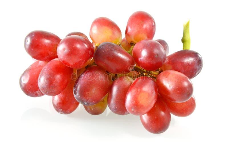 Raisins frais colorés photo stock