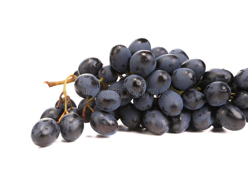 Raisins mûrs noirs photos stock