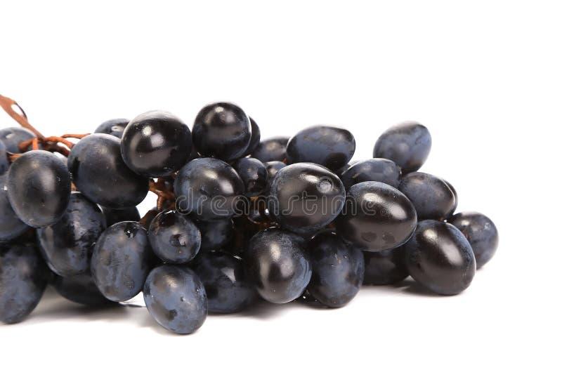 Raisins mûrs noirs photo stock