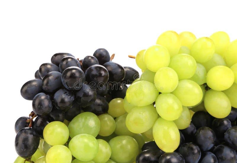 Raisins mûrs noirs et verts. image libre de droits