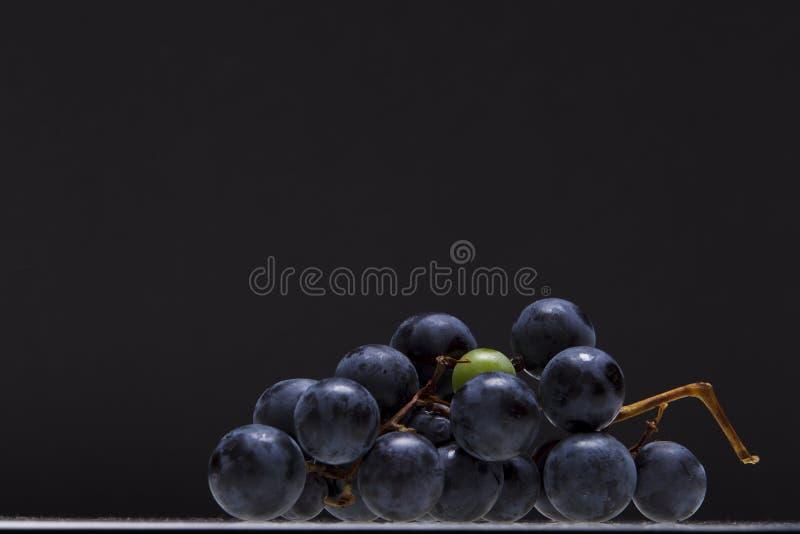 Raisins noirs images stock