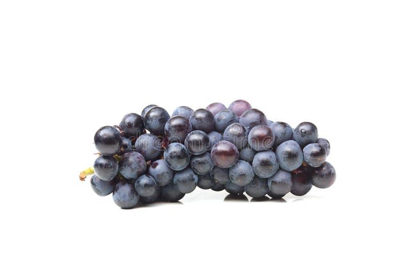 Raisins pourpres images stock