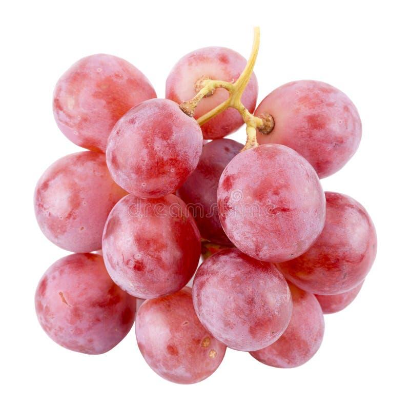 Raisins roses d'isolement sur un fond blanc photos stock
