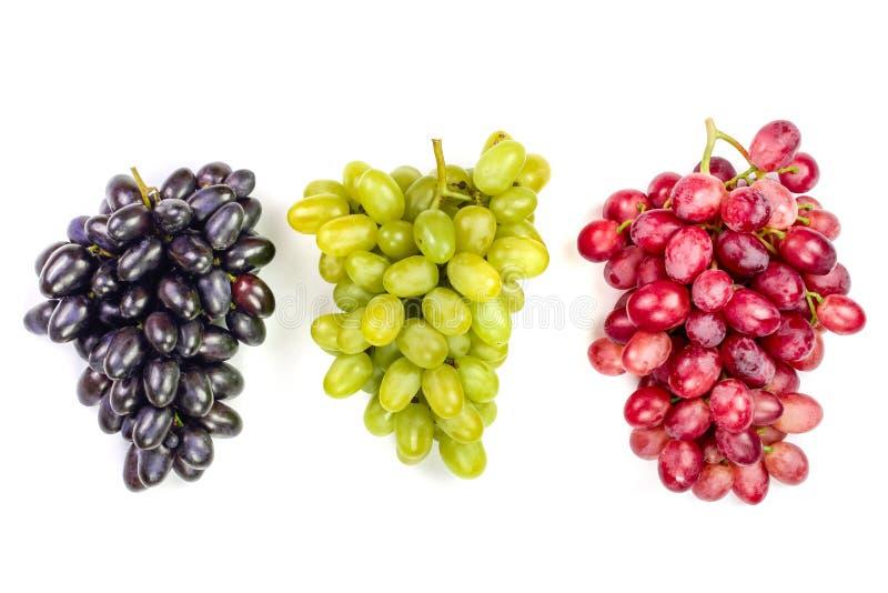 Raisins roses et bleus verts d'isolement sur le fond blanc photo stock