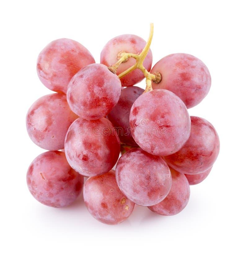 Raisins roses sur un fond blanc image libre de droits