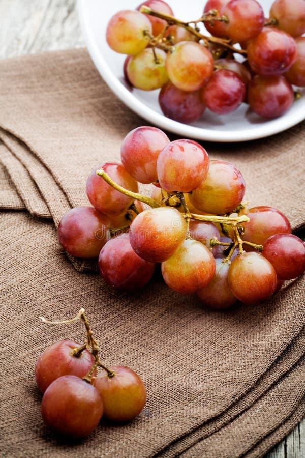 Raisins rouges images libres de droits