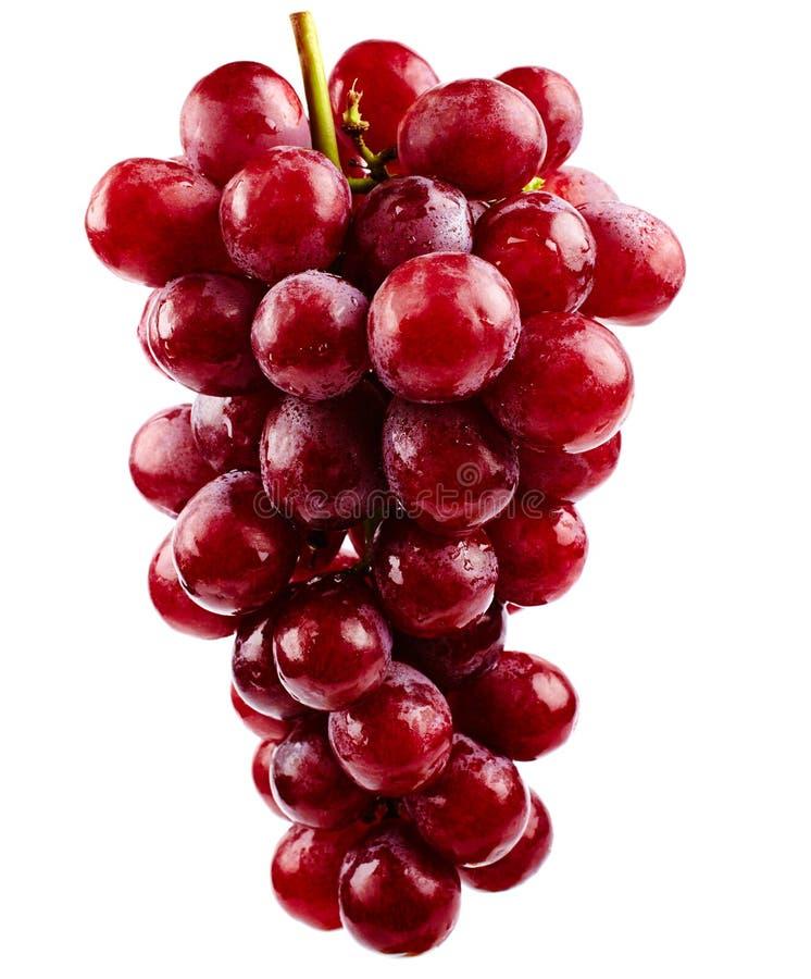 Raisins Rouges Photographie stock