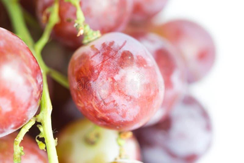 Download Raisins rouges image stock. Image du saison, rouge, centrale - 45354597