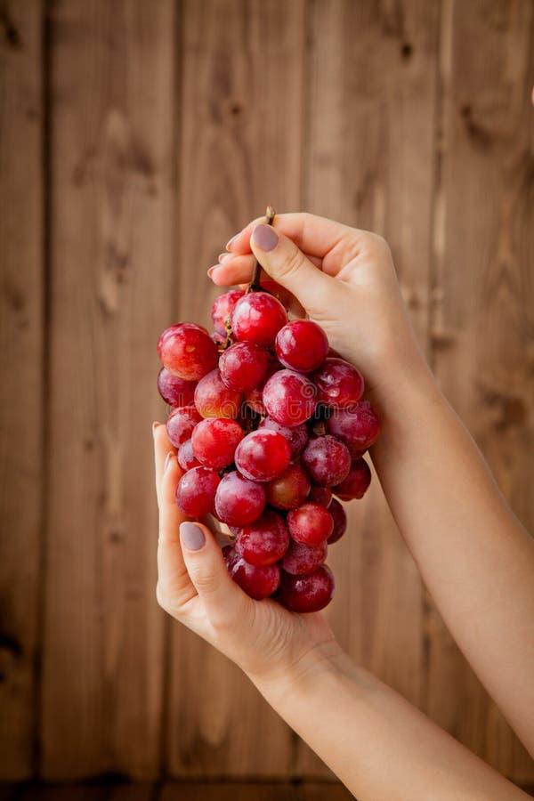Raisins savoureux doux dans la main de la femme gracieuse sur le fond en bois, l'espace de copie photographie stock