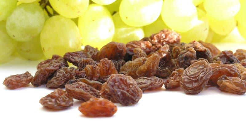 Raisins secs photo libre de droits
