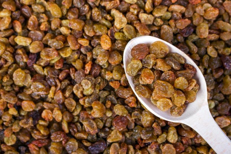 Raisins secs dans une cuillère en bois sur le fond de raisins secs Plan rapproché image stock