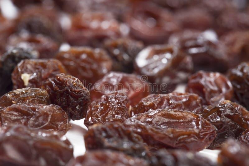 Raisins secs, raisins secs photo libre de droits