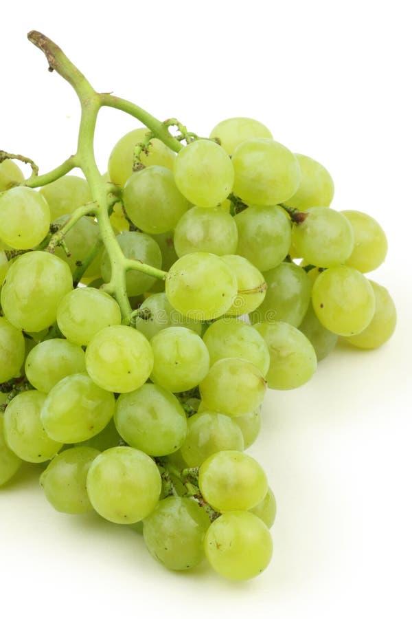 Raisins verts photographie stock libre de droits