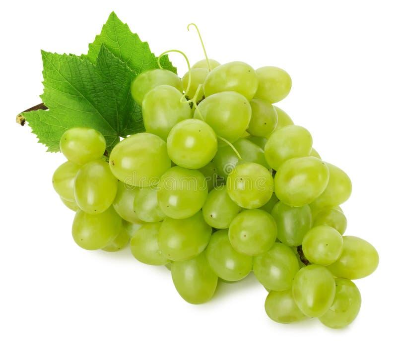 Raisins verts d'isolement sur le fond blanc image libre de droits