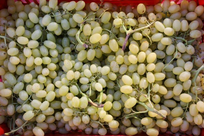 Raisins verts dans une boutique végétale grecque photo libre de droits