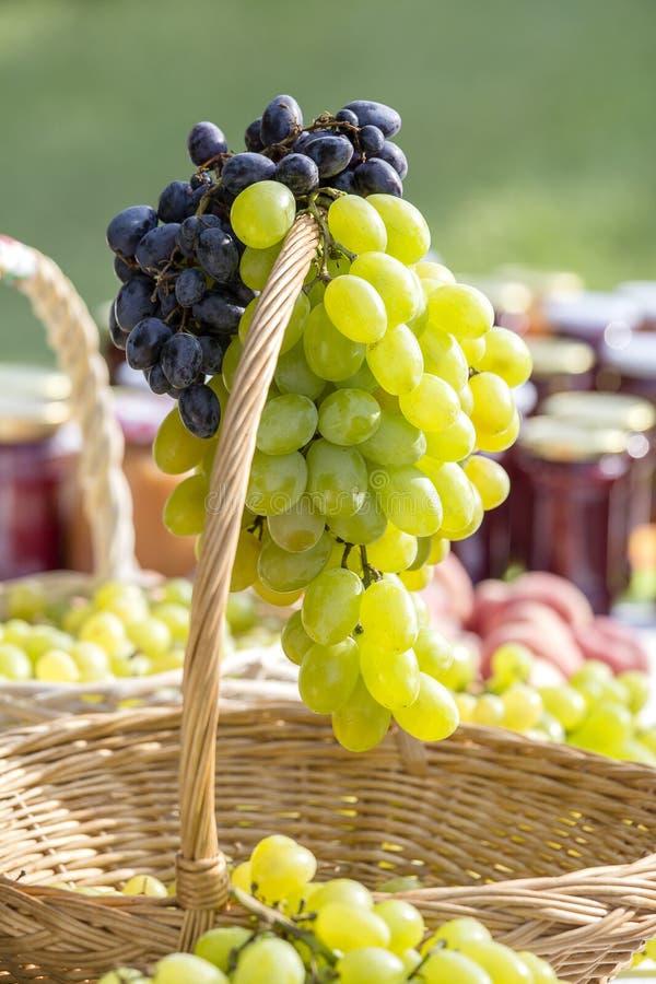 Raisins verts et rouges sur le marché en Hongrie Fin vers le haut image libre de droits