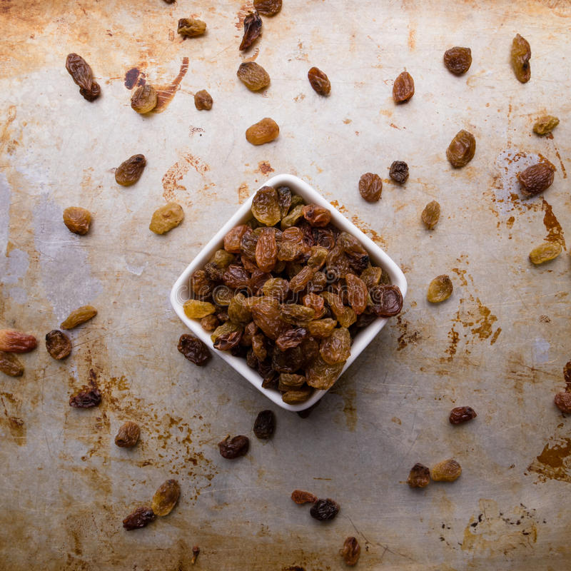 Raisins in a white bowl stock images