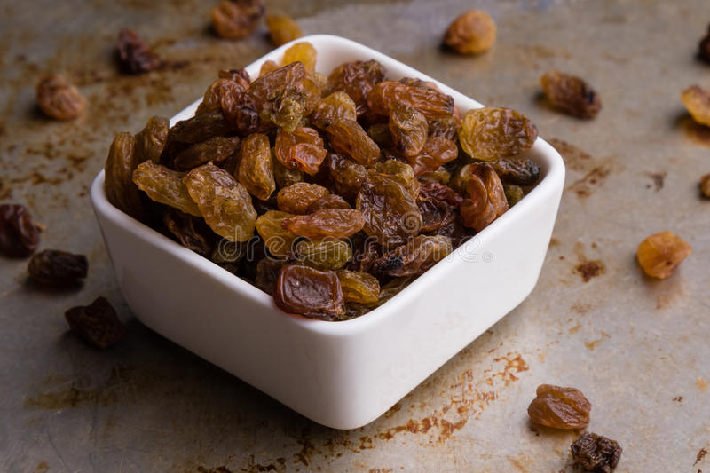 Raisins in a white bowl royalty free stock images