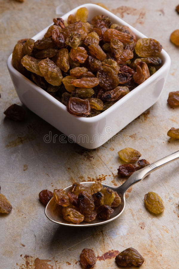 Raisins in a white bowl stock photography