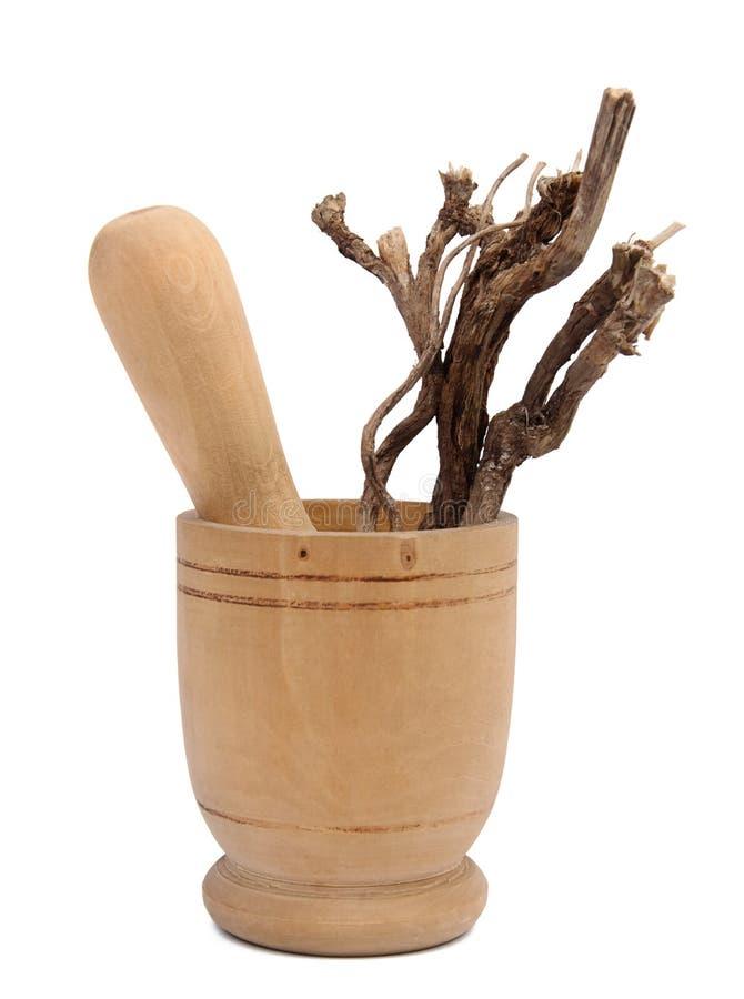 Raizes de chicória no almofariz de madeira no branco fotos de stock