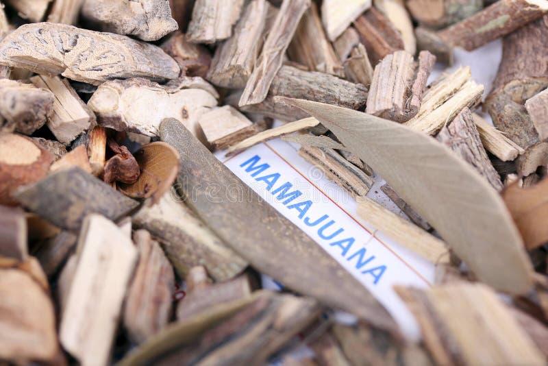Raizes de Mamajuana foto de stock