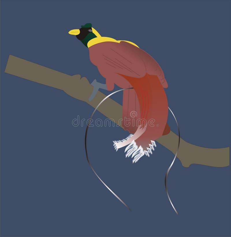 Download Raj ilustracji. Ilustracja złożonej z ptak, świat, rodzina - 57651046