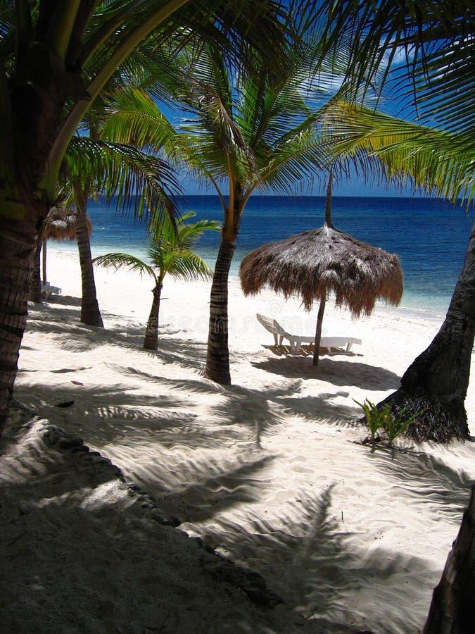 raj na plaży tropikalny fotografia royalty free