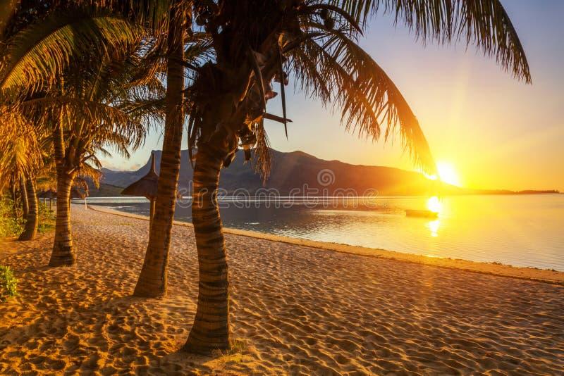 Raj piaskowata plaża z drzewkami palmowymi i górami przy zmierzchem zdjęcia royalty free
