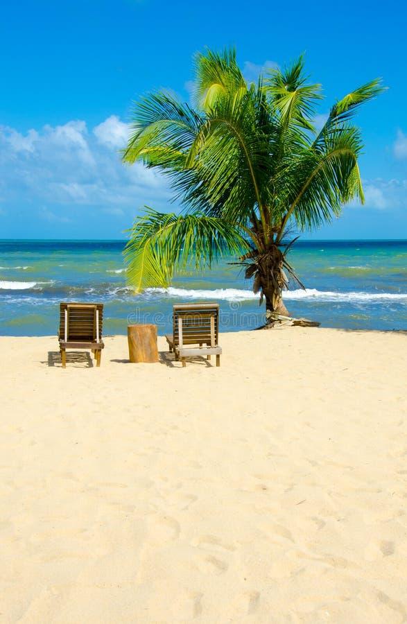 Raj plaża przy Hopkins - tropikalny karaibski wybrzeże Belize, Ameryka Środkowa - fotografia stock