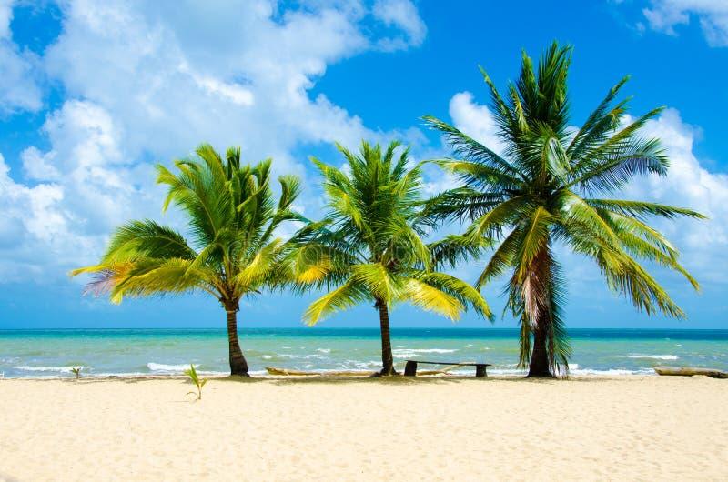 Raj pla?a przy Hopkins - tropikalny karaibski wybrze?e Belize, Ameryka ?rodkowa - obraz stock