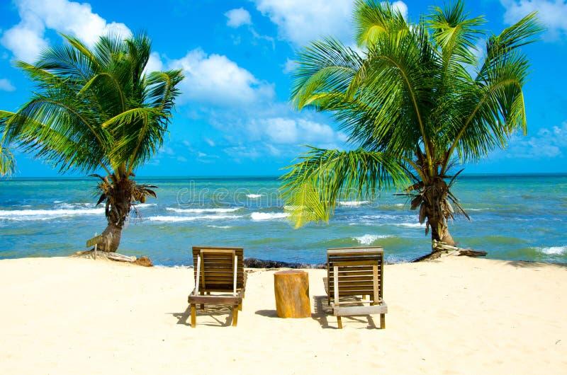 Raj pla?a przy Hopkins - tropikalny karaibski wybrze?e Belize, Ameryka ?rodkowa - fotografia royalty free