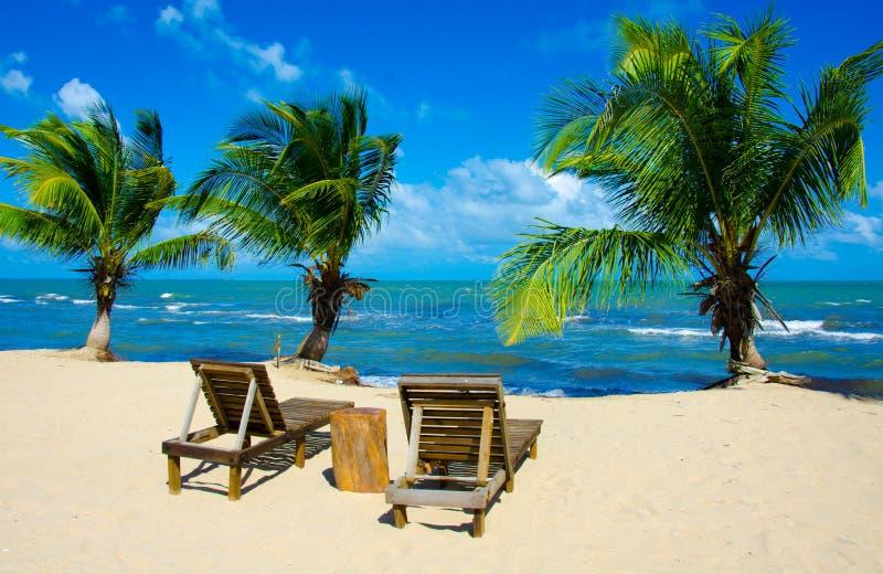 Raj pla?a przy Hopkins - tropikalny karaibski wybrze?e Belize, Ameryka ?rodkowa - zdjęcie stock