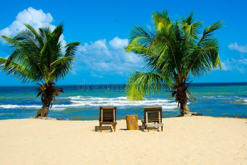 Raj pla?a przy Hopkins - tropikalny karaibski wybrze?e Belize, Ameryka ?rodkowa - zdjęcie royalty free