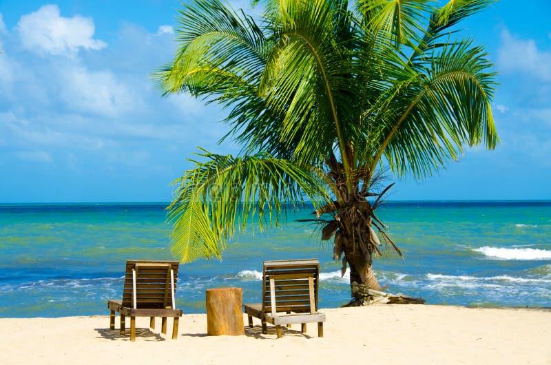 Raj pla?a przy Hopkins - tropikalny karaibski wybrze?e Belize, Ameryka ?rodkowa - obraz royalty free