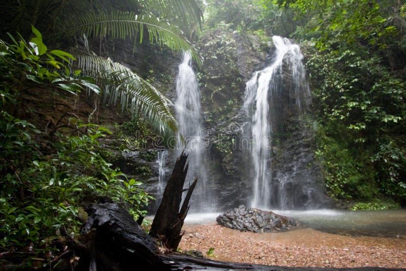 Raj siklawy w głębokim tropikalnym lesie, Koh Lanta, Tajlandia fotografia stock