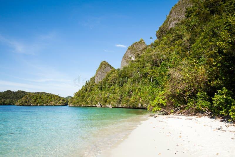 Raja Ampat Island. Raja ampat, last paradise on earth,west papua, island of New Guinea, the four kings royalty free stock image