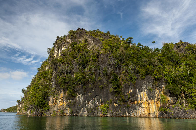 Raja Ampat Islands in West Papua, Indonesia. Raja Ampat is an archipelago comprising over 1,500 small islands and is the part of Coral Triangle which contains royalty free stock photo