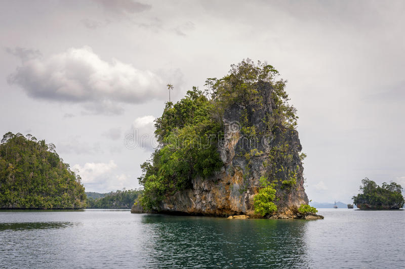 Raja Ampat Islands in West Papua, Indonesia. Raja Ampat is an archipelago comprising over 1,500 small islands and is the part of Coral Triangle which contains royalty free stock photos