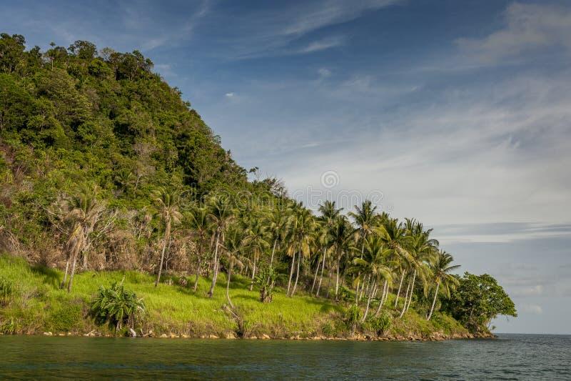 Raja Ampat, West-Papoea, Indonesië royalty-vrije stock fotografie