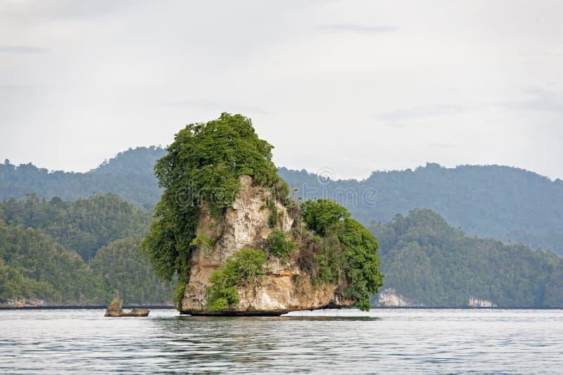 Raja Ampat, West-Papoea, Indonesië royalty-vrije stock foto's
