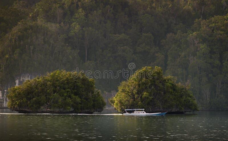 Raja Ampat, West-Papoea, Indonesië royalty-vrije stock afbeeldingen