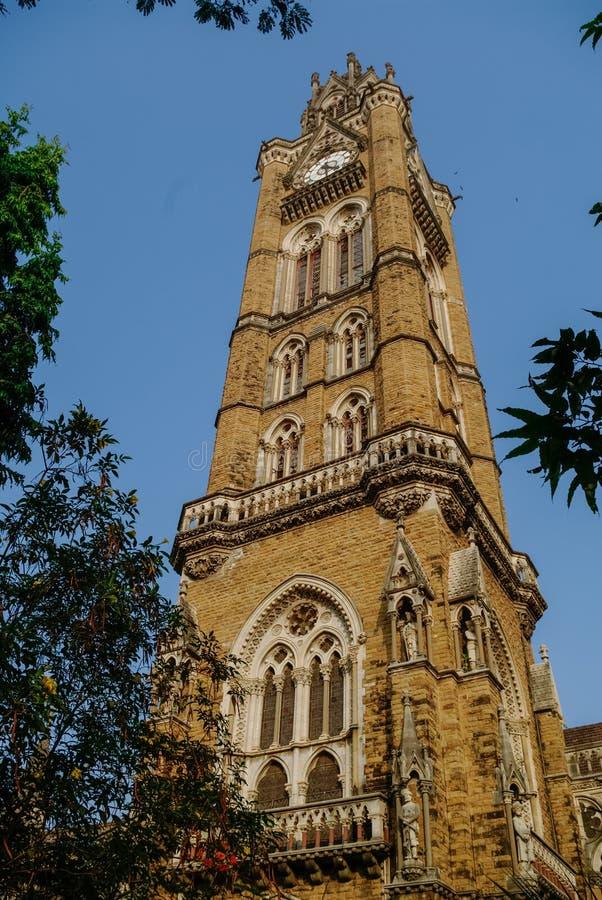 Rajabai Zegarowy wierza, dziedzictwo budynek, uniwersytet Mumbai krzywka zdjęcie stock