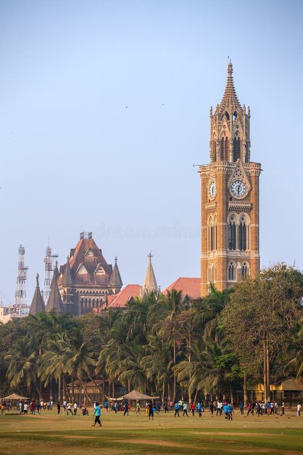 Rajabai zegarowy wierza w gothic stylu i zielonym krykieta polu w Mumbai, India obraz royalty free