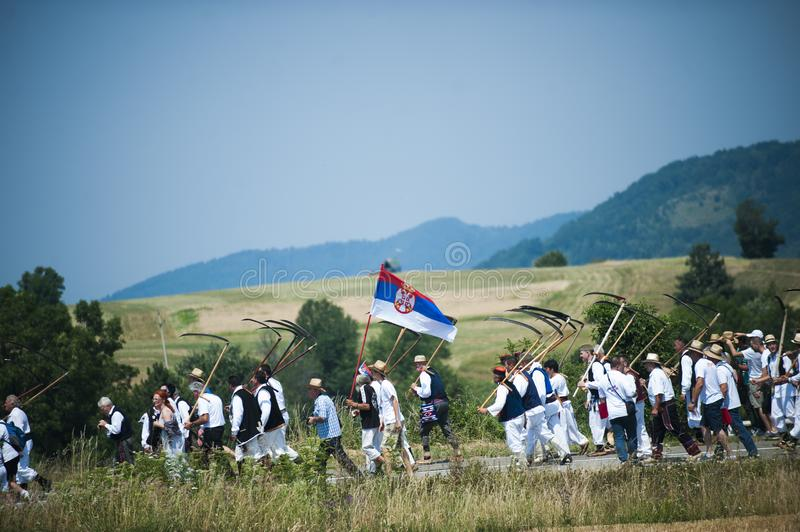 Mowing on Rajac mountain. RAJAC, SERBIA - JULY 19, 2015: Mowing on Rajac mountain, traditional competiton in Central Serbia, near Ljig city, during which farmers royalty free stock photos