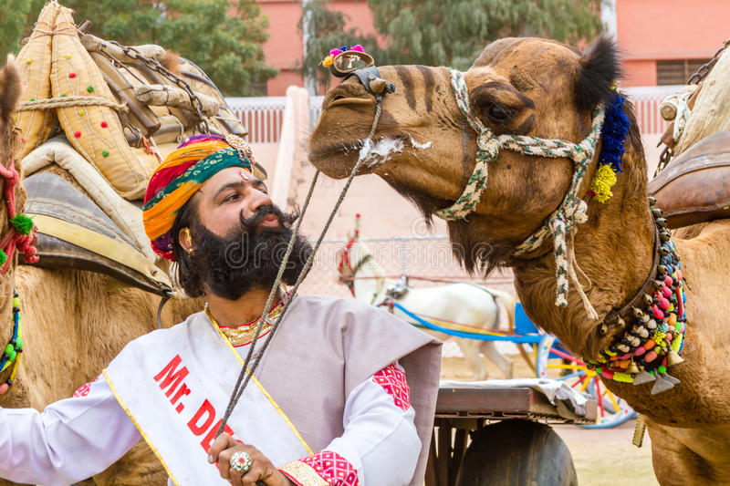 Rajasthani man and camel. Bikaner, India, 14th January 2017 - A traditionally dressed Rajasthani man with a camel at the Bikaner Camel Mela in Rajastan, India stock photography